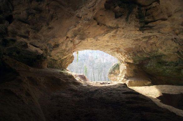 decod neanderthal 6
