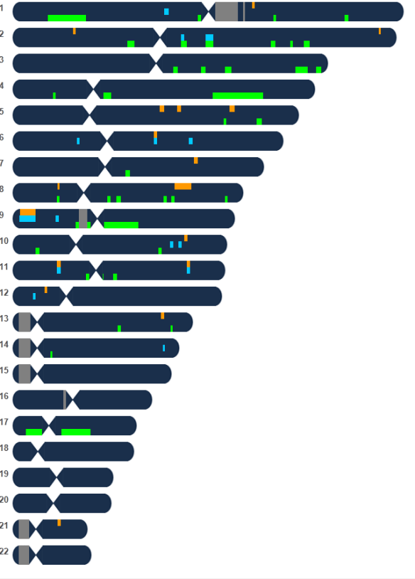 perez chromosomes