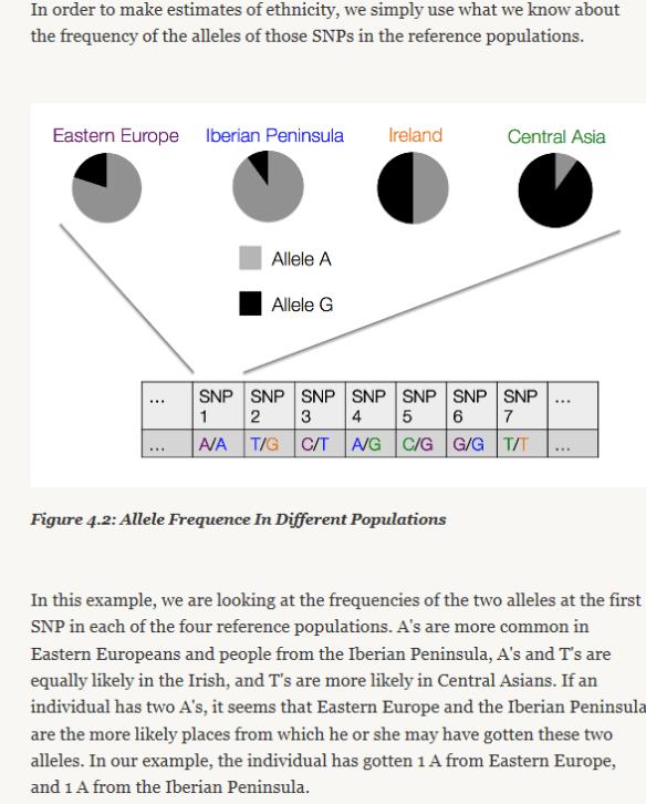 ancestry allele snps