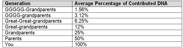 Autosomal % chart
