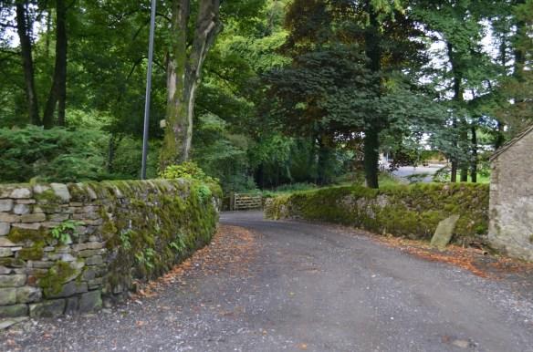 Rock walled road
