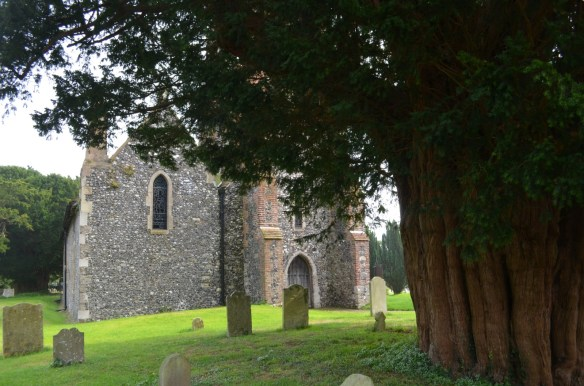 St Nicholas Ringwould yew