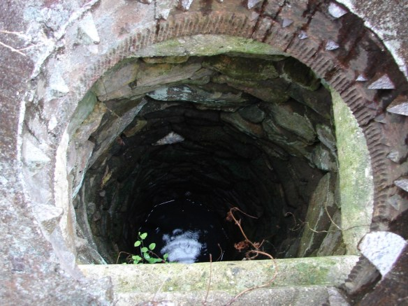 younger well