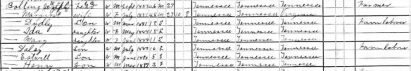1900 hancock census