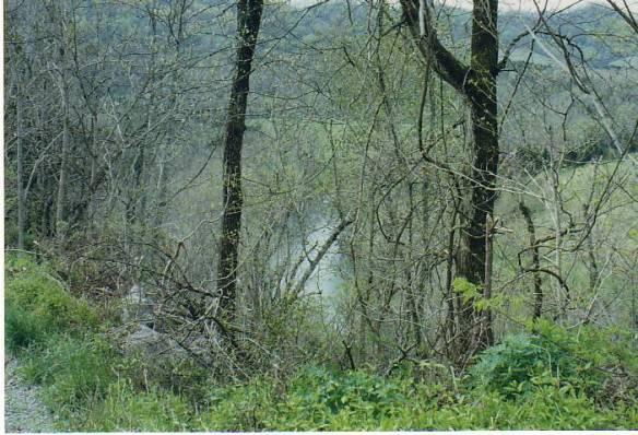 mary parkey powell river