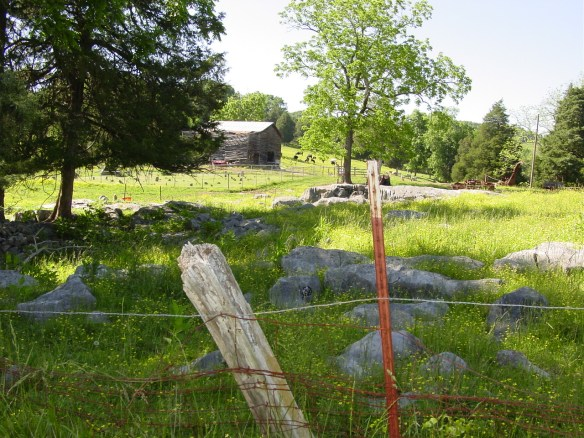 clarkson field2