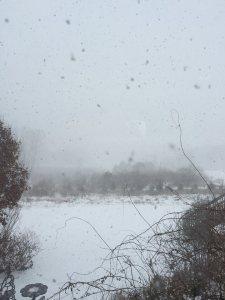 Michgian early winter