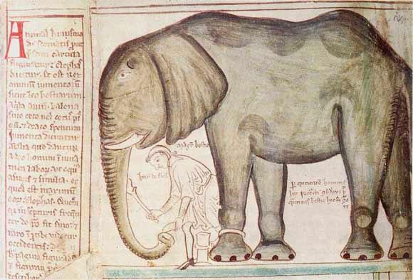 Henry III elephant
