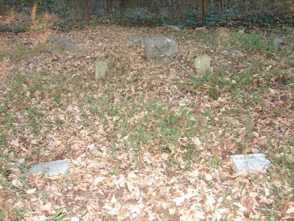 Venable cemetery new Estes stones