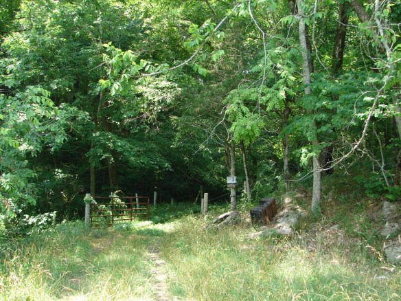 Entrance on Mulberry Gap to Vannoy land