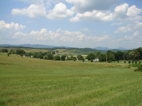 Carter's Station field