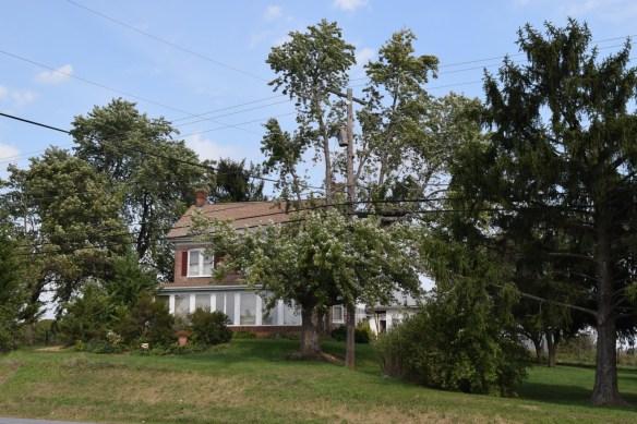 Miller land current house