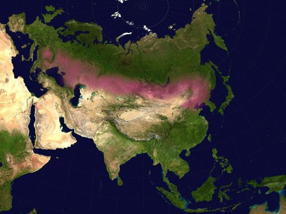 Lentz steppe map
