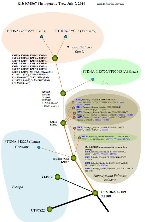 JakobLenz Malyshev chart