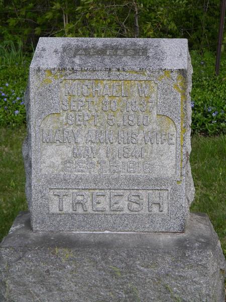 JDM Treesh stone