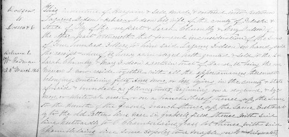 mary-dodson-1861-deed