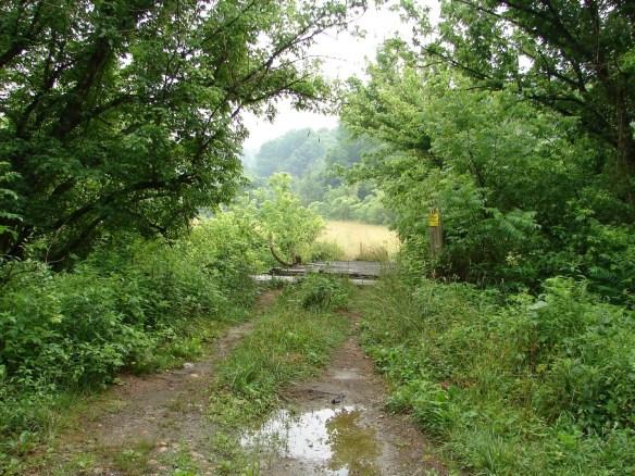 raleigh-dodson-creek-campbell
