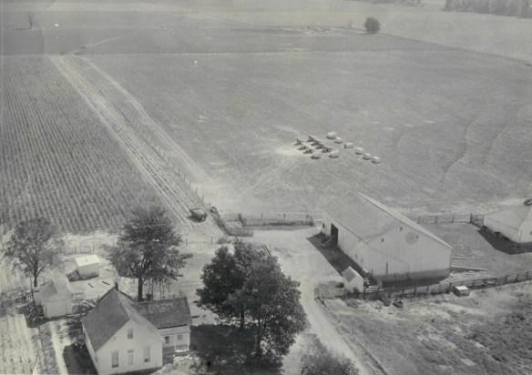Farm 1955