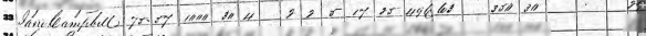 Jane Dobkins 1860 census..png