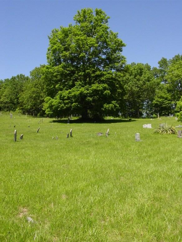 Jane Dobkins, Dobkins Cemetery.jpg