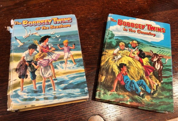 Bobsey Twins.jpg