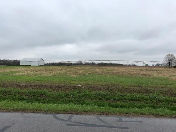 Hiram Ferverda Plain Twp land.jpg