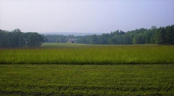 William Moore Henderson field.jpg