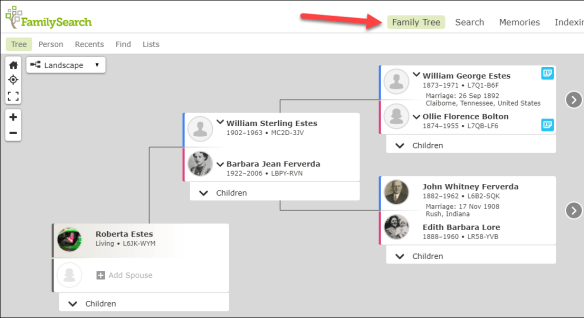 FamilySearch tree.png