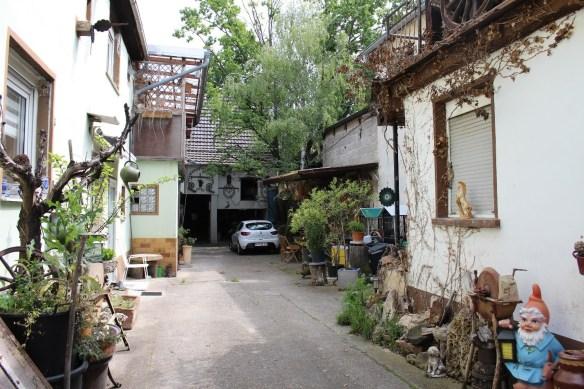 Fussgoenheim Kirsch garden 5.jpg