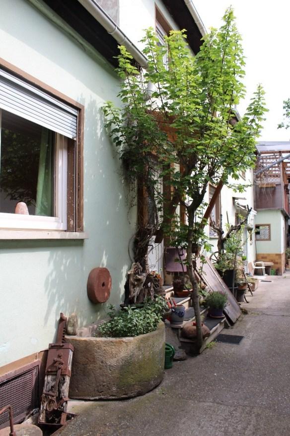 Fussgoenheim-Kirsch-garden-6.jpg