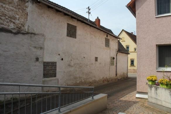 Fussgoenheim Kirsch neighbor.jpg