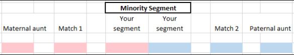 Minority ethnicity minority segment.png