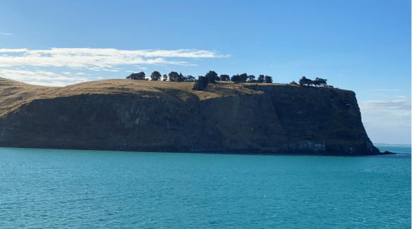 Australia Tasman outcrop.png