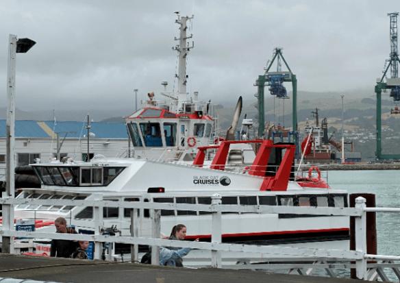 Christchurch catamaran.png