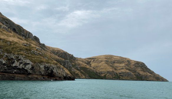 Christchurch harbour mountains.png