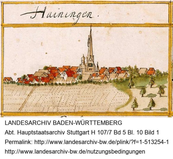 Haag Heiningen.jpg