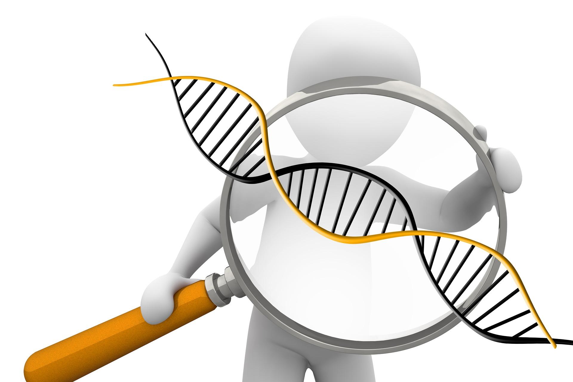 Détective de l'ADN