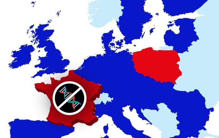 Le gouvernement français maintient l'interdition des tests de généalogie génétique en France en février 2020