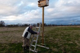 N40 Box: Tom sets up short ladder