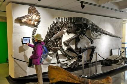 Kirsten & Lambeosaurus (KB)