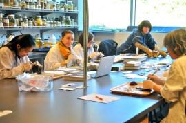 grad. students preparing bird specimen (KB)