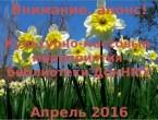 Анонсы мероприятий библиотеки на апрель
