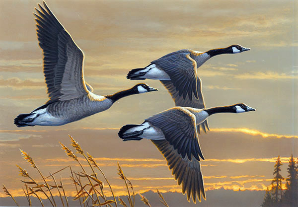 2016 Federal Duck Stamp by James Hautman