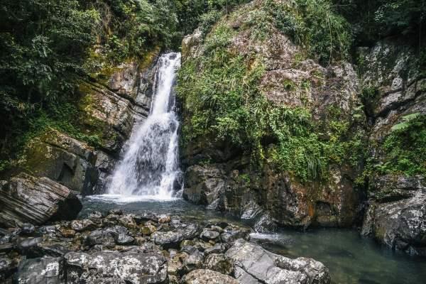 El Yunque National Forest – Puerto Rico