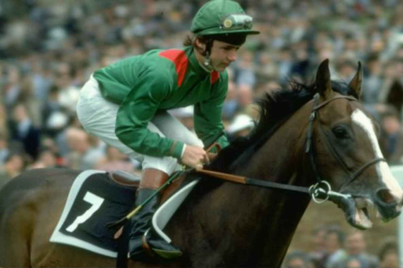 Image result for shergar