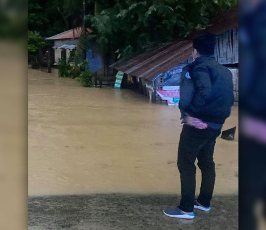 BACOLOD CITY, Negros Occidental, Philippines - Typhoon Quinta left Hinobaan town with at least P6.9 million in estimated damages to agriculture, rice crops and infrastructure, based on the partial assessment of the municipality.