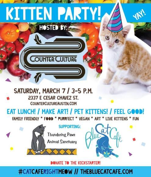 kittenparty