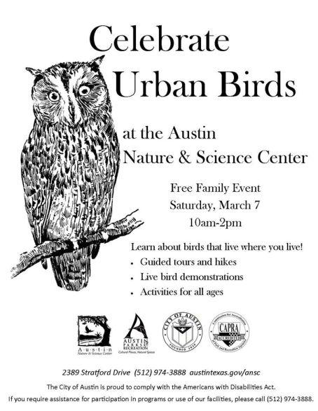 urbanbirds