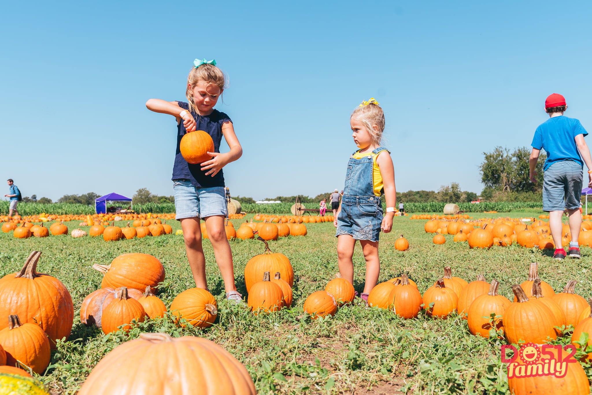 top 10 pumpkin patches around austin do512 family rh do512family com