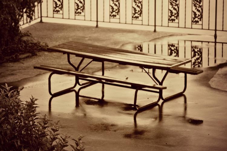 8 Empty Picnic Table